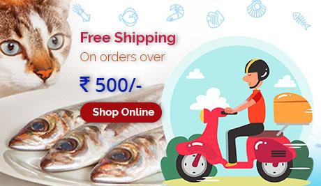 Fishterianz - Buy Fresh Fish Online In Mumbai at Best Price